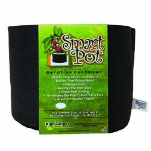 Smart Pot 1 Gallon