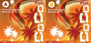 Nutri-Plus Coco Plus Bloom