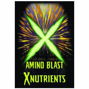 X Nutrients Amino Blast