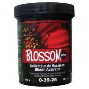 Nutri Plus Blossom Plus 300 g Powder