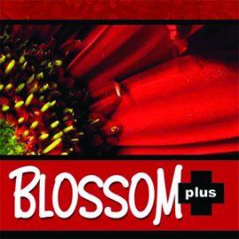 Nutri Plus Blossom Plus 20 g Powder Logo