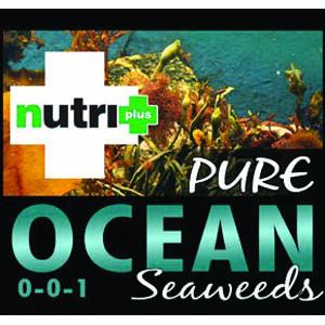 Nutri-Plus Pure Ocean Seaweed 4 liters