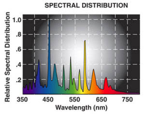hilux opti-blue spectrum