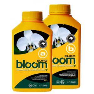 bloom euro b 2.5 liters