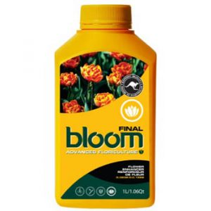 Bloom Final Yellow Bottles
