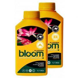 bloom flower a yellow bottles