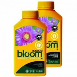 bloom imuno 2
