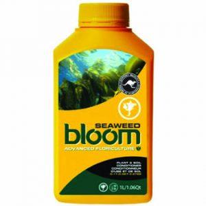 bloom seaweed 2.5 liters