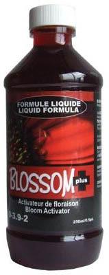 blossom 250 ml