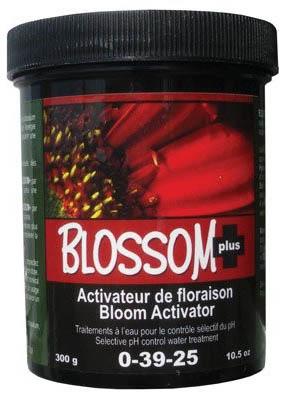 blossom plus