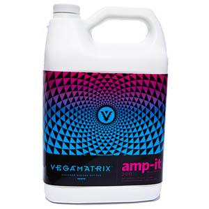 vegamatrix amp it micros