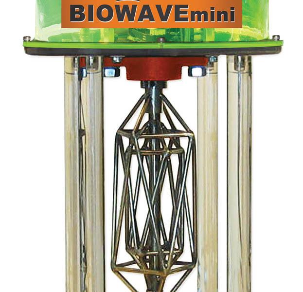 BW1000-623x600