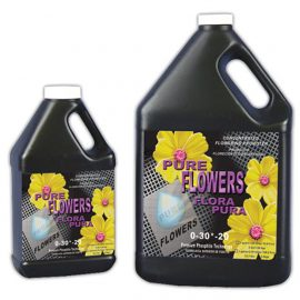 Nature's Nectar Pure Flowers Gallon
