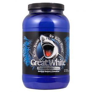 great white 5 lb