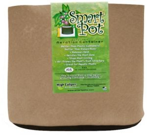 Tan Smart Pot 15 Gallon