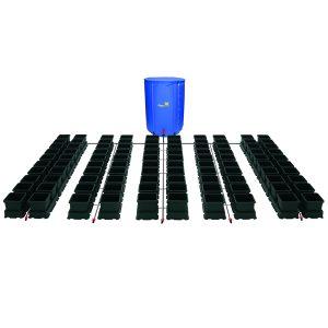 easy2grow 100 pots
