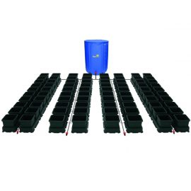 easy2grow 80 pots