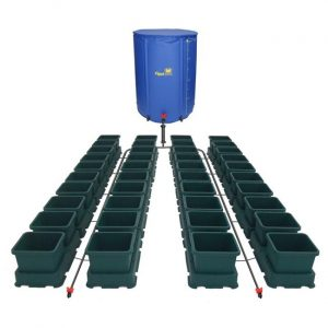 easy2grow 40 pots