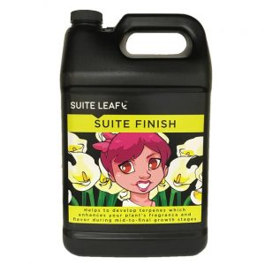 suite finish gallon