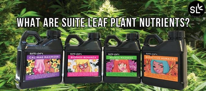 suite leaf plant nutrients