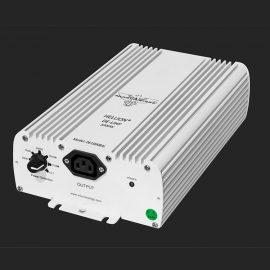 hellion digital ballast 1000 watt